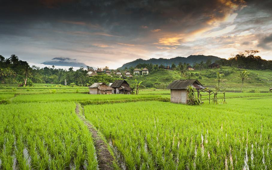 Sidemen Village in Bali - Rice Fields Landscapes and Traditional Farming Village in East Bali