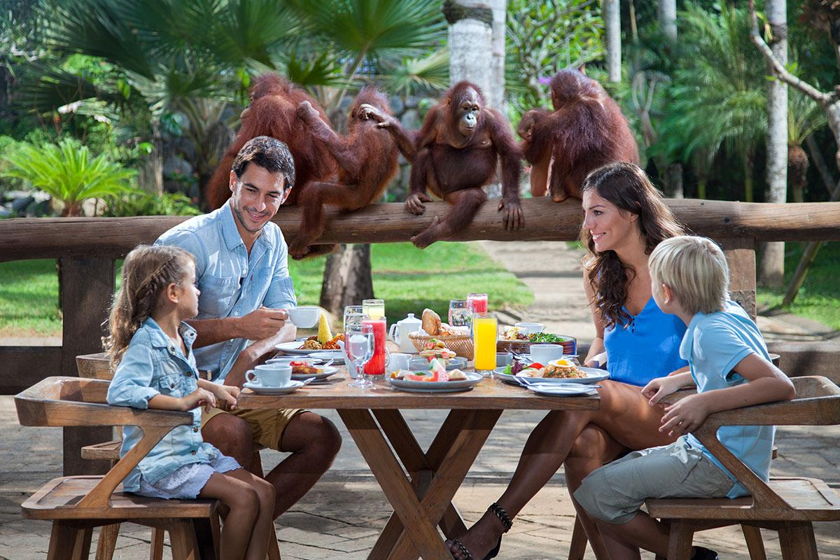 Half-Day Bali Zoo Explorer Tour Including Hotel Transfer and Lunch