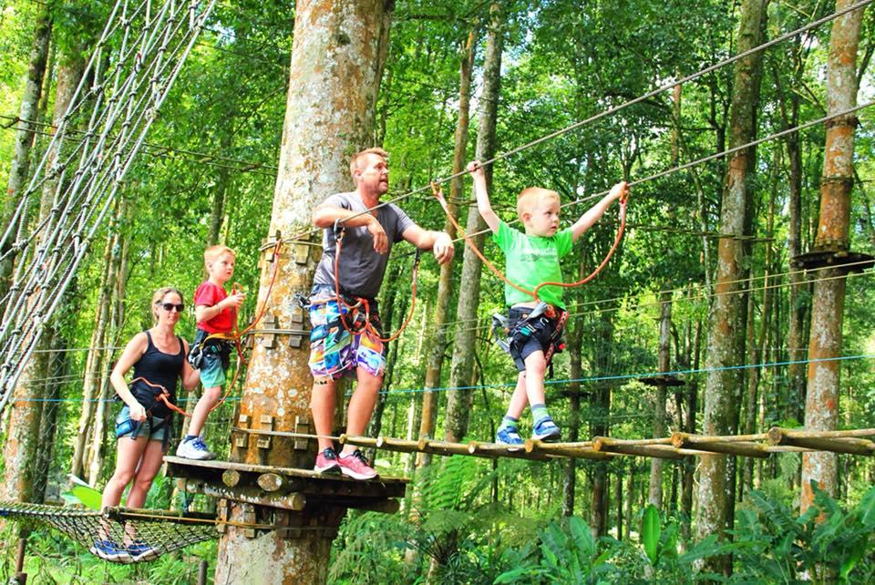 Full Day Treetop Adventure Family Package