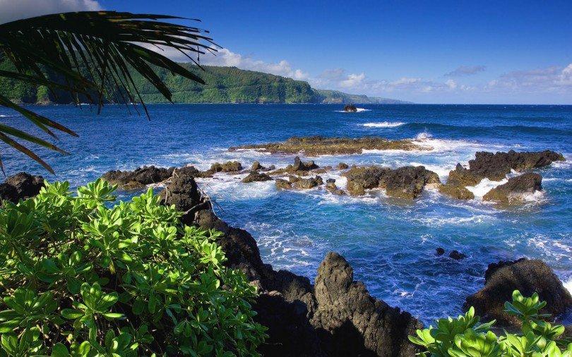 The Bali Barat National Park