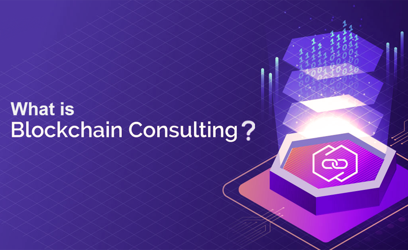 What do you understand by blockchain consultants