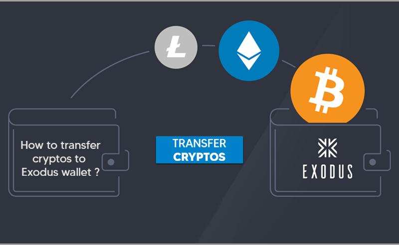 How to Send Cryptos To Exodus Wallet