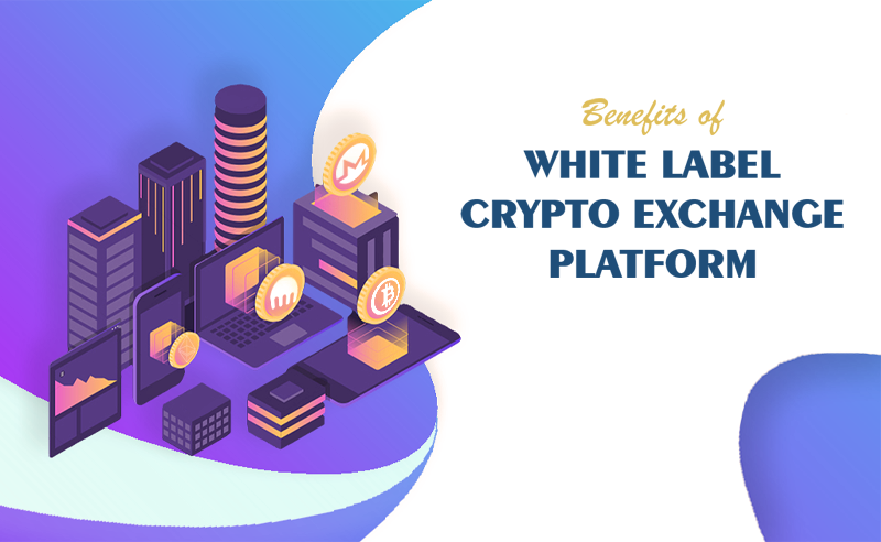 Benefits of white label crypto exchange platform