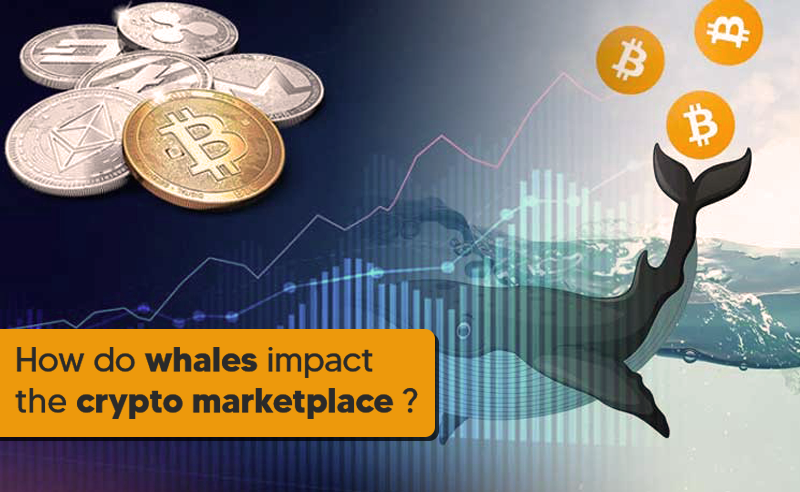 How do whales impact the crypto market