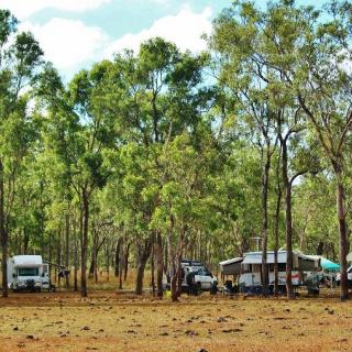 Ringers Rest RV Park/Bush Camp