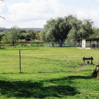 Chookhouse Farmstay