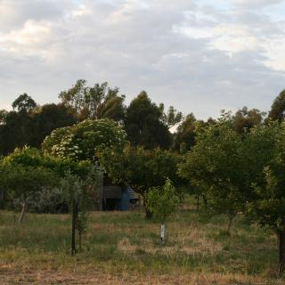 Murrnong Farm