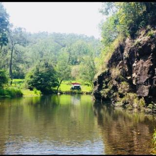 Hidden Valley Tea Gardens and Camping