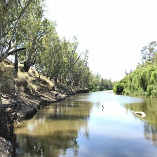 Tranquil sites on the banks of the Namoi River